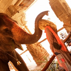 Elephant Blessing Hampi Karnataka India