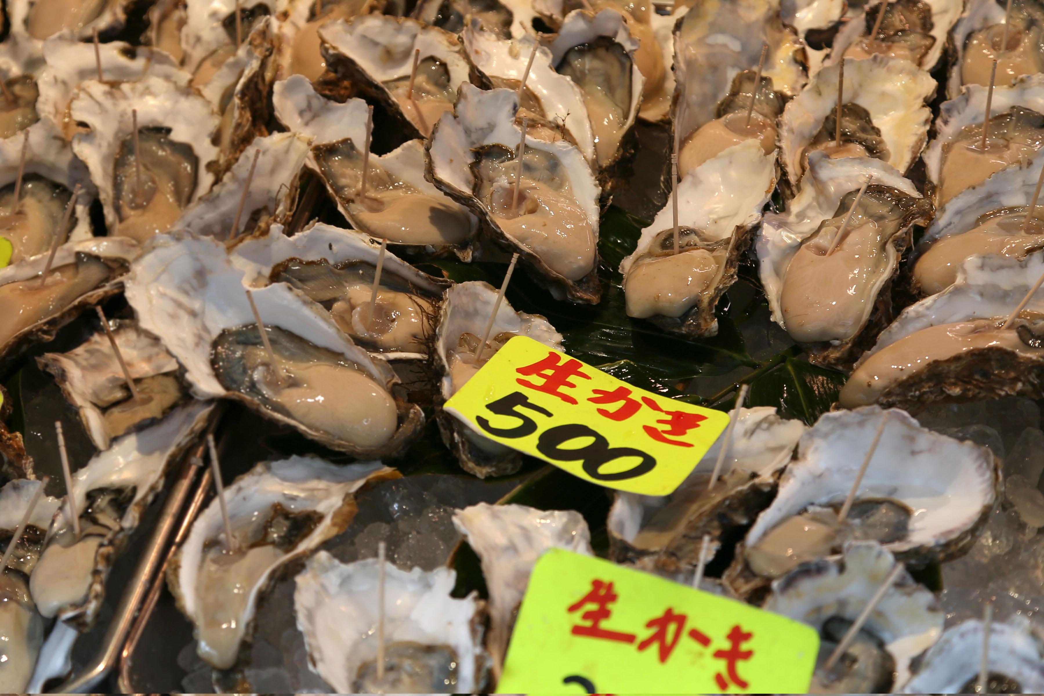 Oysters, Tsukiji Fish Market, Tokyo, Japan
