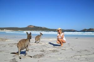 Amazing Facts about Australia