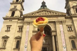 Rosa Gelato Budapest Hungary