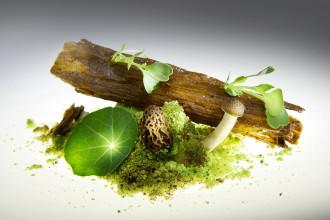 Magic Mushrooms @ Gaggan Bangkok: Mushrooms in the shape of a log, Edible Soil
